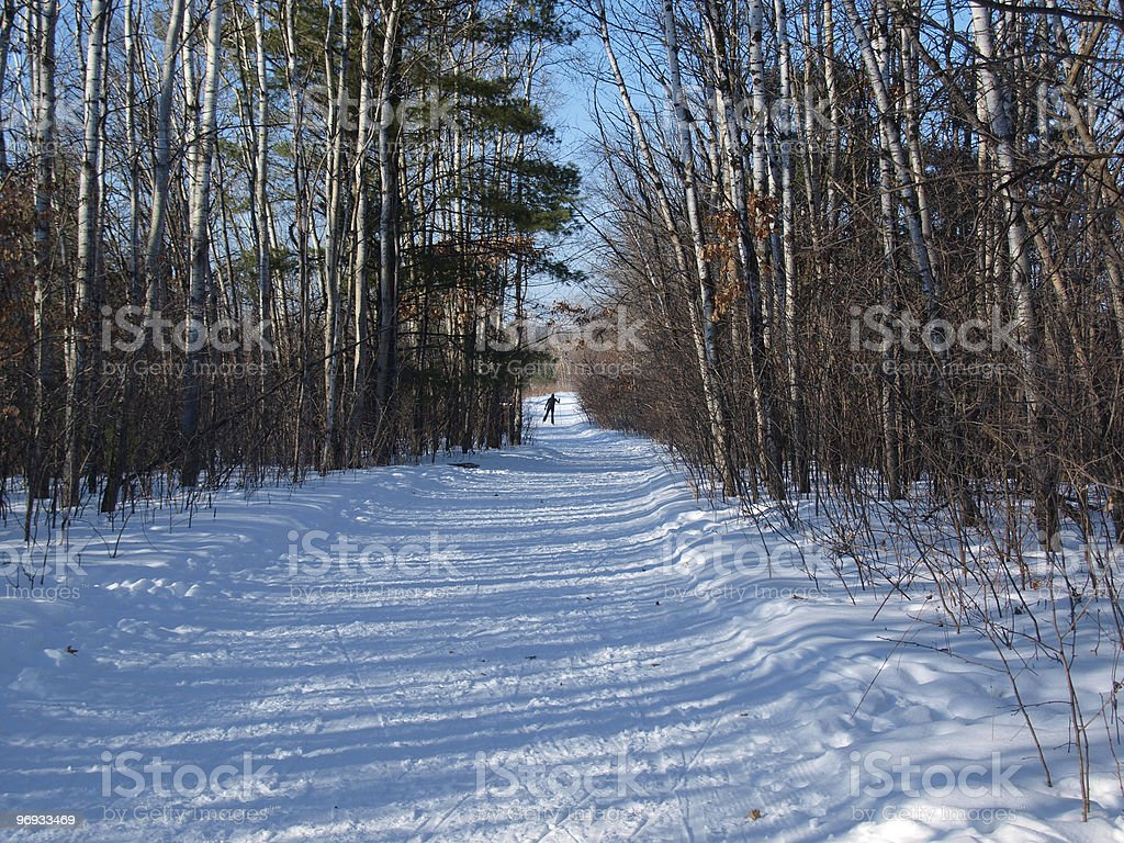 Cross Country Skiing royalty-free stock photo