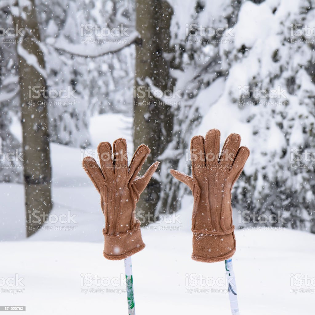 Cross country sticks with mittens. stock photo