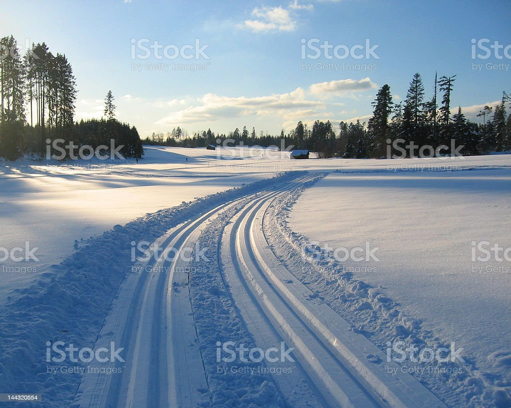 cross country trail in the afternoon royalty-free stock photo