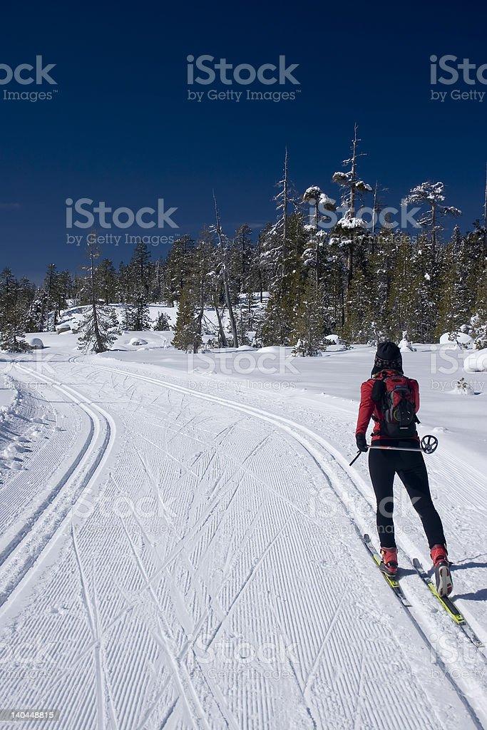 Cross County Ski royalty-free stock photo