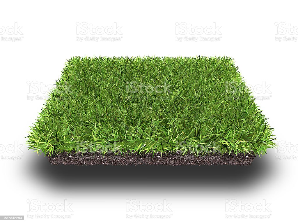 cross section of ground with grass stock photo