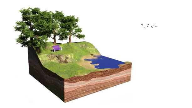 querschnitt des bodens mit see, wald, strand und bank, idyllische parklandschaft mit bäumen cube-konzept (3d-rendering, isoliert auf weißem hintergrund) - gartenillustration stock-fotos und bilder