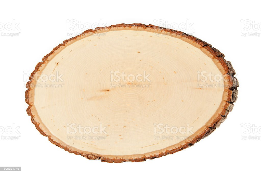 Cross Section of Log: Wooden Sign Isolated stock photo