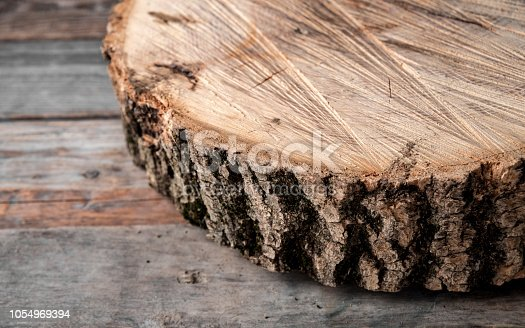 istock cross section of the big old tree on a rustic table 1054969394
