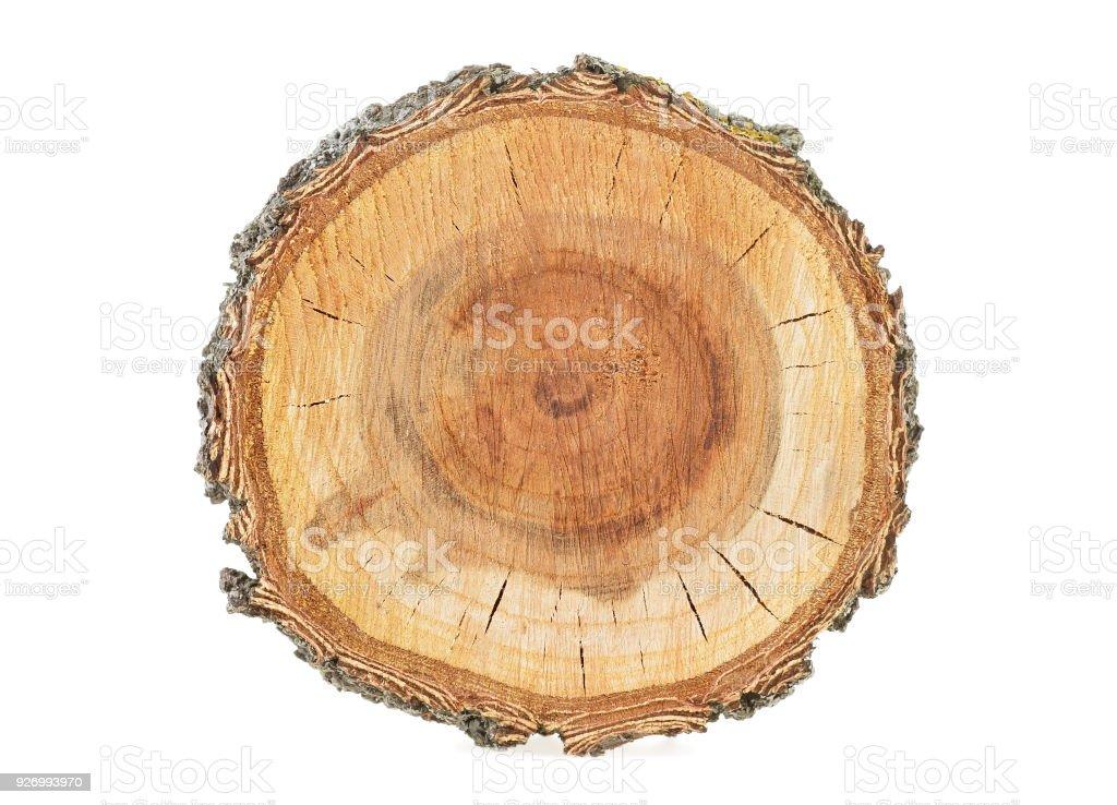Sección del fondo del árbol, blanco - foto de stock