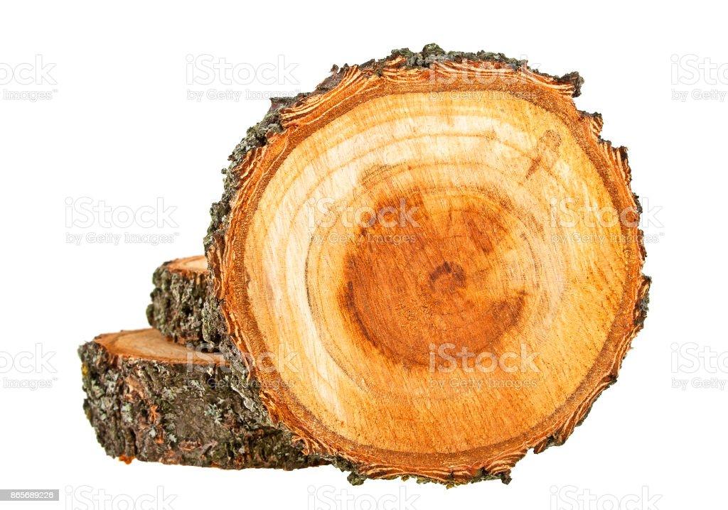 Sección transversal de tronco de árbol sobre un fondo blanco - foto de stock