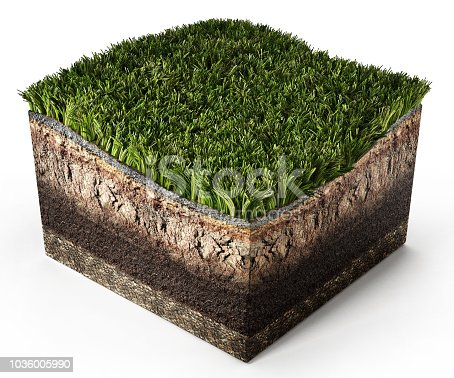 Cross section soil with green grass showing layers isolated on white.