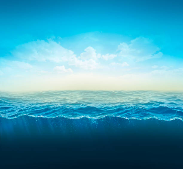 cross section water, ocean slice, water column. 3d illustration - wave water stock pictures, royalty-free photos & images