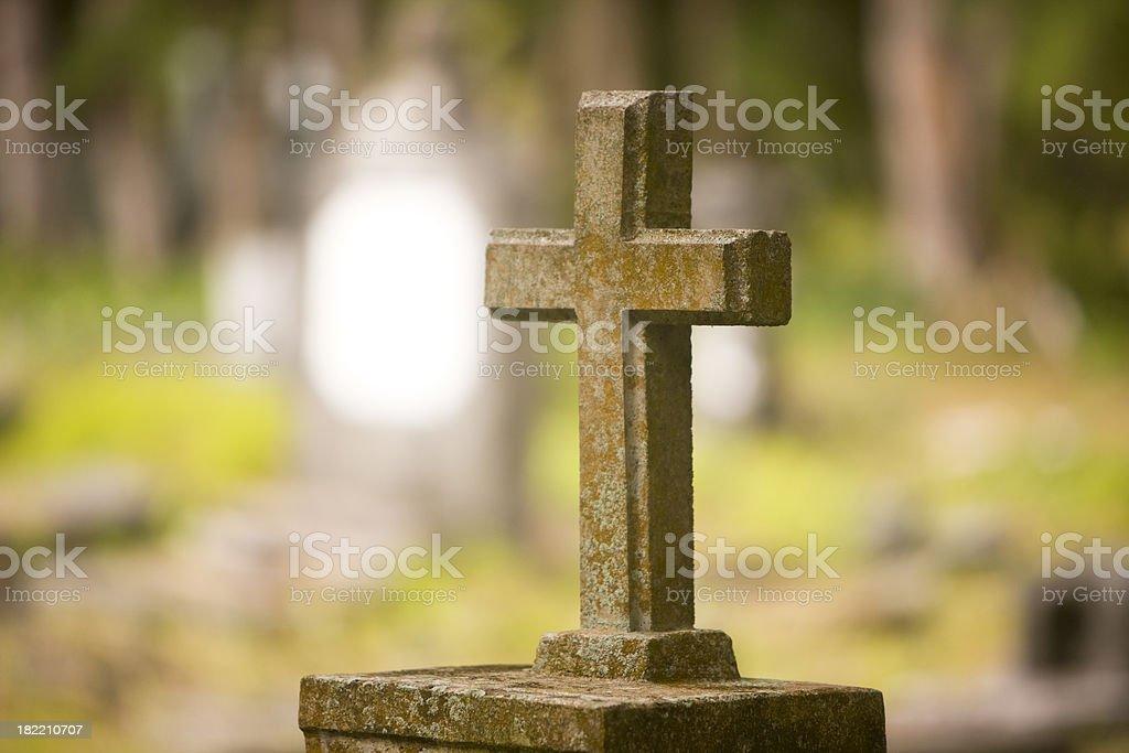 \'Cross shape, canon 1Ds mark III\'