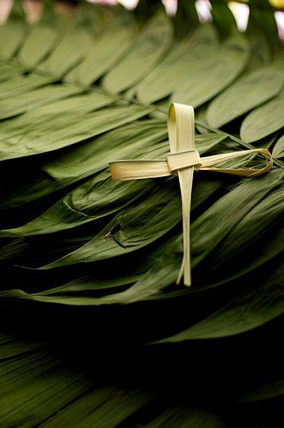 cross symbol on top of a pile of green palm leaves for lent - ash cross stock photos and pictures