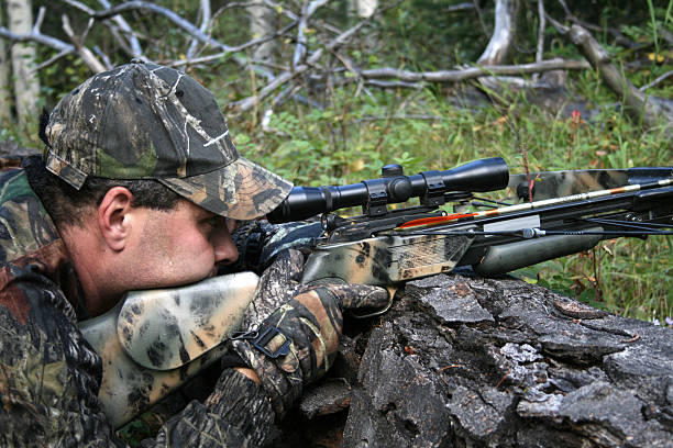 crossbow hunter - crossbow stock pictures, royalty-free photos & images