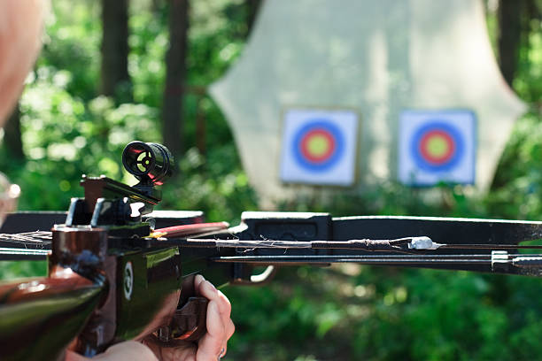 crossbow shooting - crossbow stock pictures, royalty-free photos & images