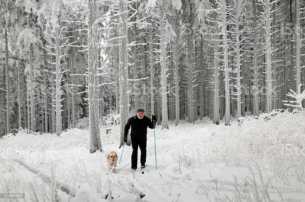 Cross-country runner with a dog in Wonderland royalty-free stock photo