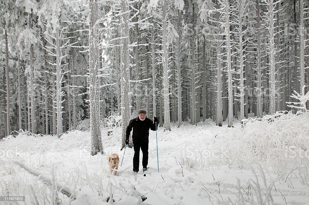 Cross-country-Laufschuh mit einem Hund im Wonderland – Foto