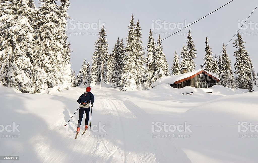 Cross-country ski royalty-free stock photo