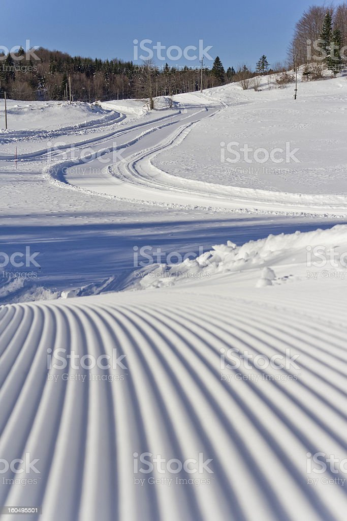 Cross-country ski track III stock photo