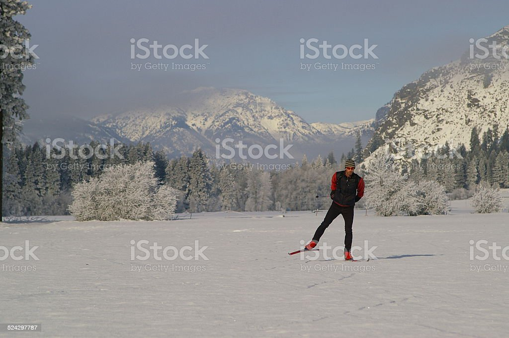 Crosscountry skier on a frosty winter day stock photo