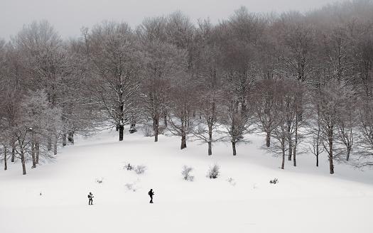 istock cross-country skiers in winter landscape 1137891374