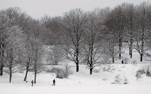 istock cross-country skiers in winter landscape 1137892286