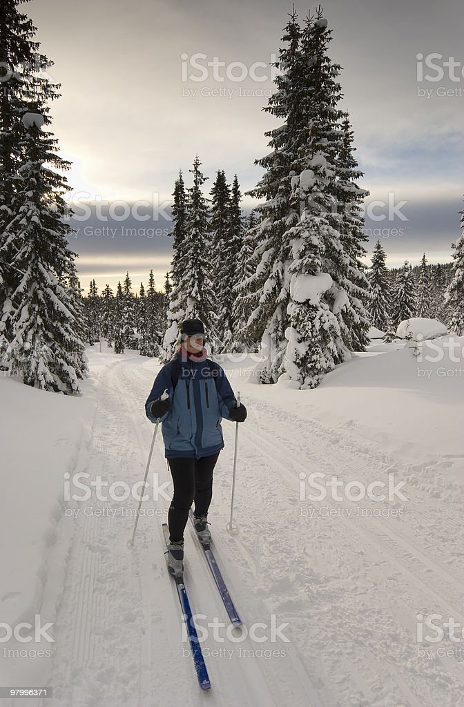 Cross-country skiier royalty-free stock photo