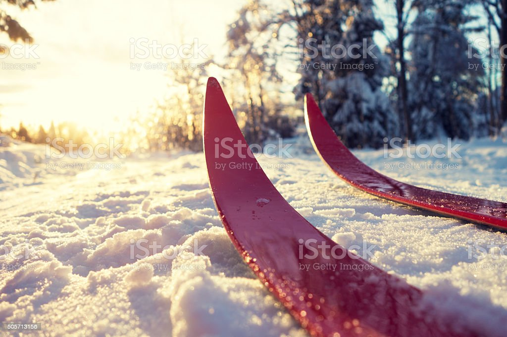 Cross-country skiing in Oslo, Norway stock photo