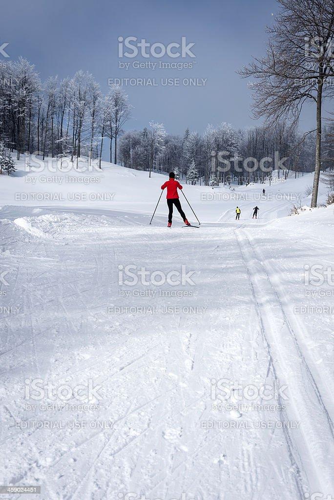 Cross-Country Skiing in Vojsko Slovenia Europe royalty-free stock photo