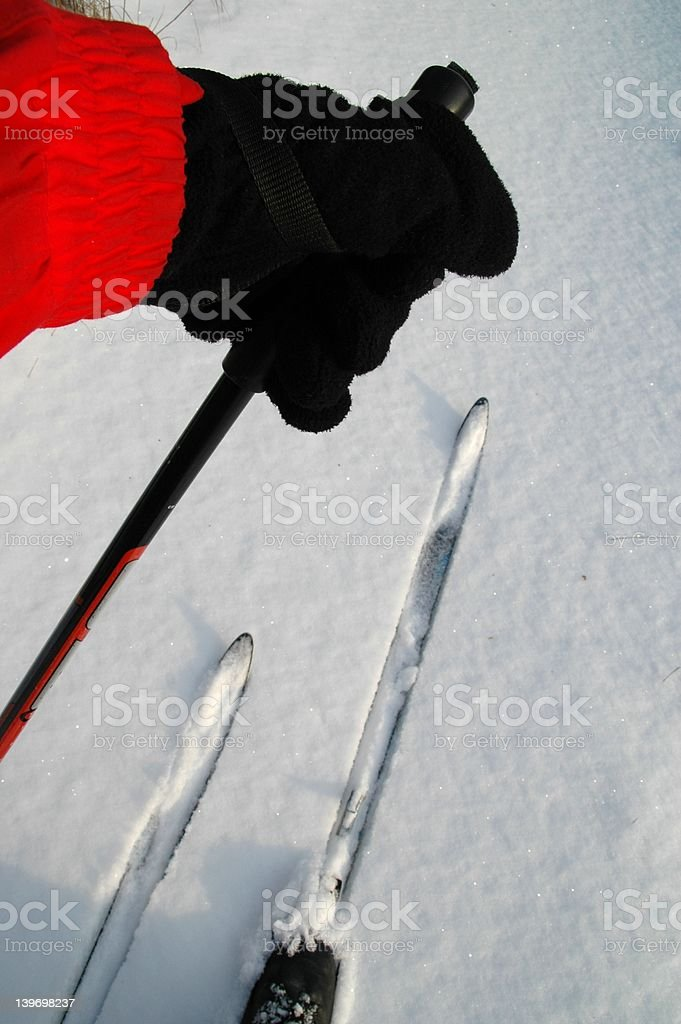 Cross-country skiing stock photo