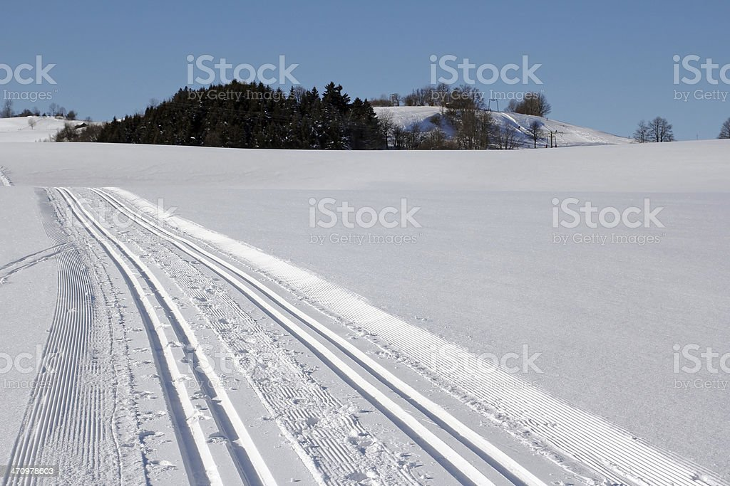 cross-country trail stock photo