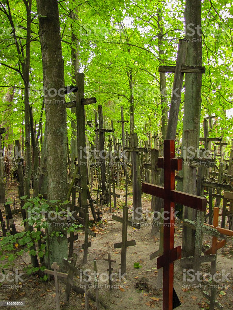 crosses in the woodland, Garbarka stock photo