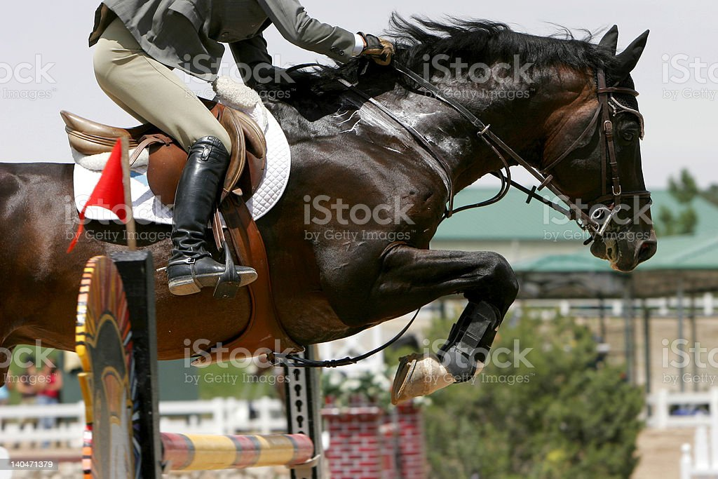 Crossing Hurdles - Equestrian Jumping (color) royalty-free stock photo