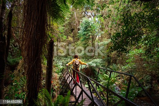A rear-view shot of an unrecognisable female backpacker exploring the woodlands in New Zealand.