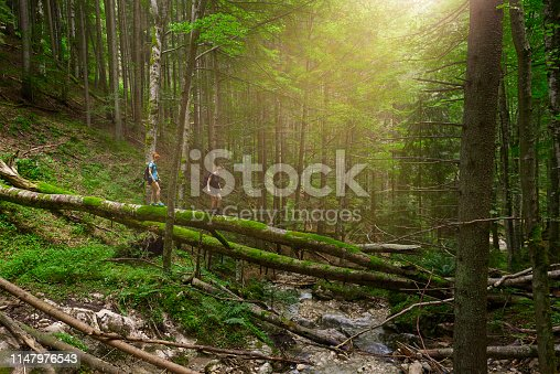 side view of two hiking friends crossing river on fallen trees.