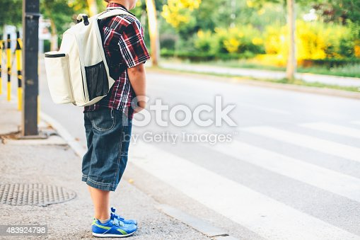 istock Crossing the Street 483924798