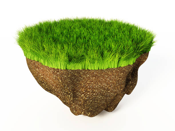Cross-section detail of land covered with grass and soil below stock photo
