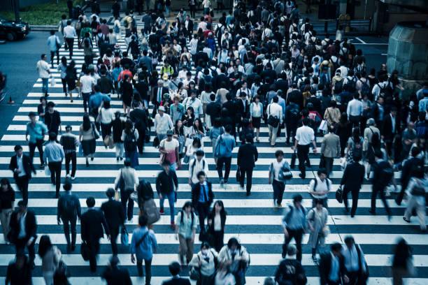 横断歩道と日本の人々 - 通勤 ストックフォトと画像