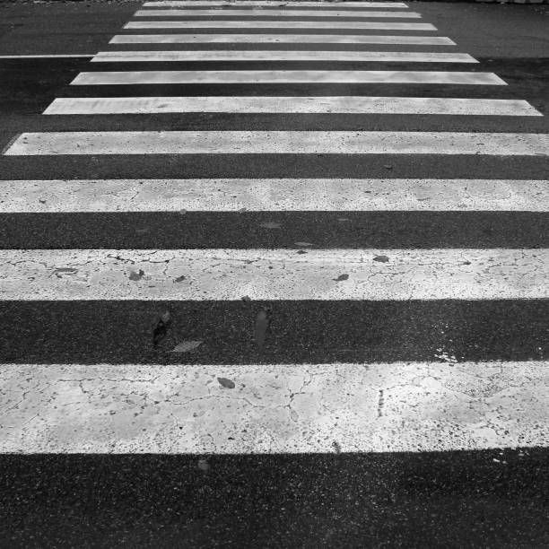 Crosswalk. Zebra stock photo