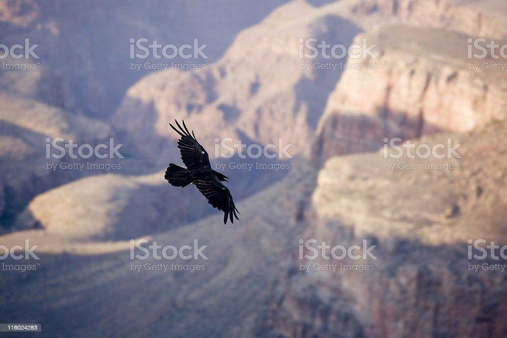 の 峡谷 クロウ