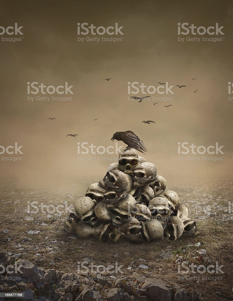 Crow on a pile of sculls stock photo