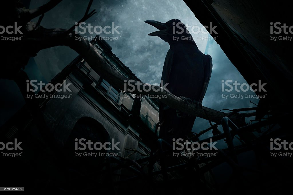 Crow sit on dead tree over old castle, Halloween concept stock photo