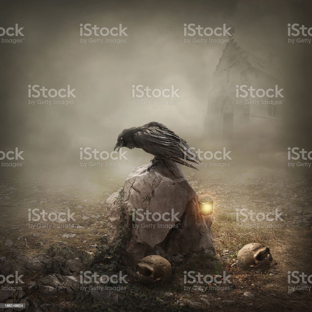 Crow sitting on a gravestone stock photo
