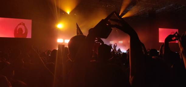 Crowd at concert. stock photo