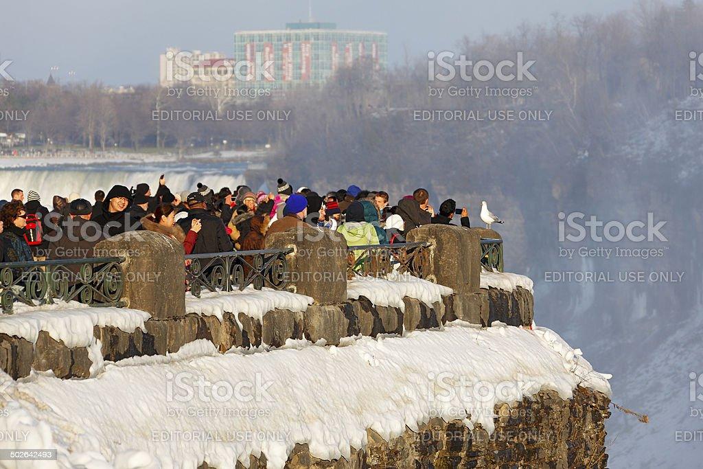 Crowd at frozen Niagara Falls with posing seagull royalty-free stock photo