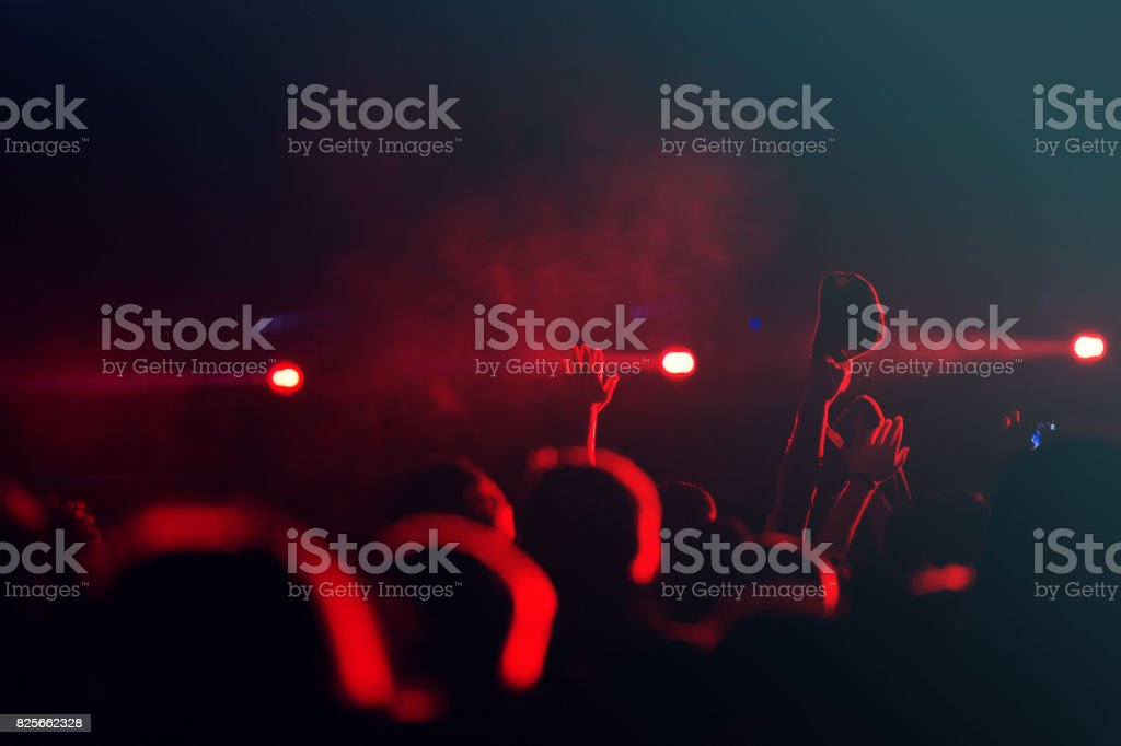 crowd at music festival stock photo
