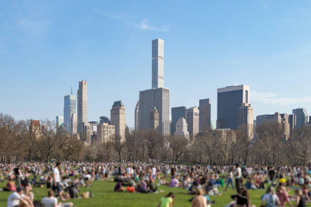 crowd of people gathered on the great lawn in central park on a sunny day with the manhattan skyline in new york city - central park manhattan zdjęcia i obrazy z banku zdjęć