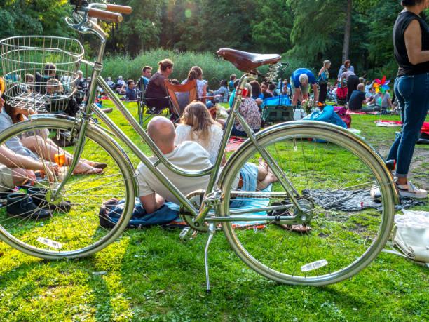 Menschenmenge von Menschen im Park, Picknick. – Foto