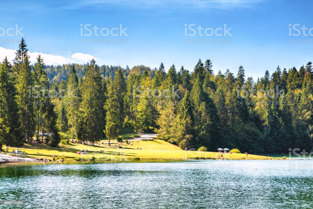 Crowd of tourists at small altitude french Genin lake in middle of wild pine forest in summer in Jura mountains stock photo