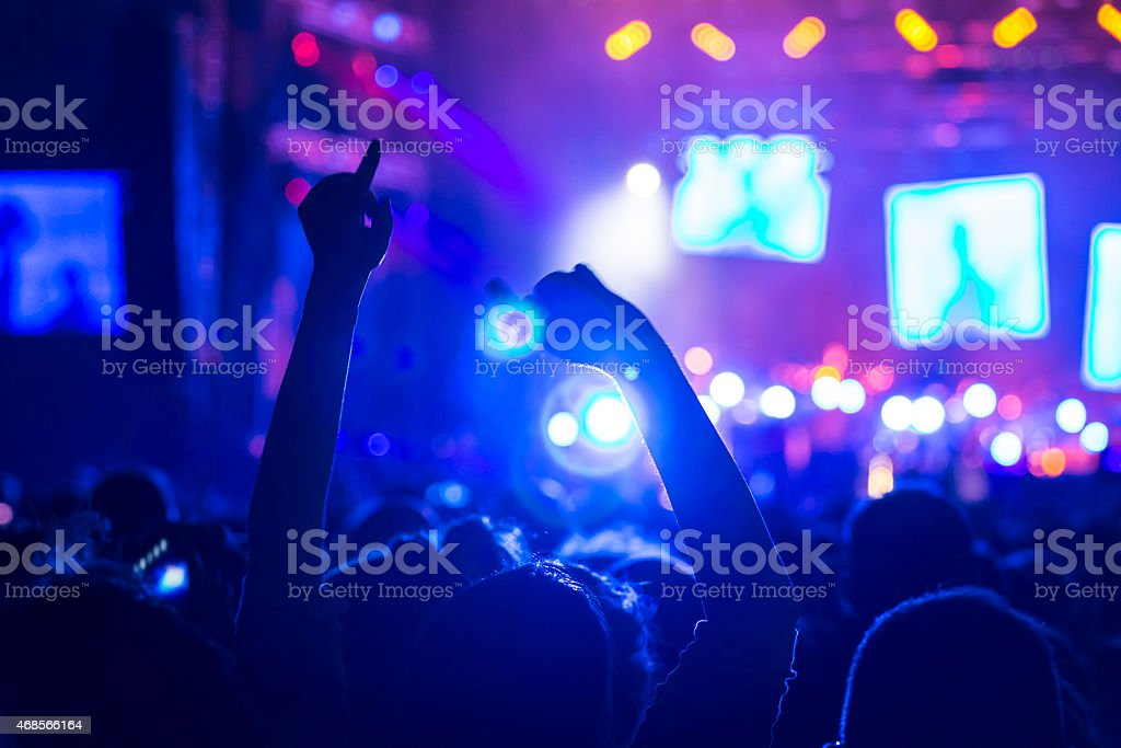 Crowd on a concert stock photo
