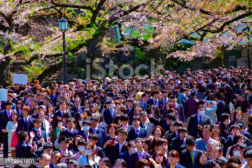 825525754istockphoto A crowd with cherry trees at Kudanshita street in Tokyo in spring wide shot 1179941601