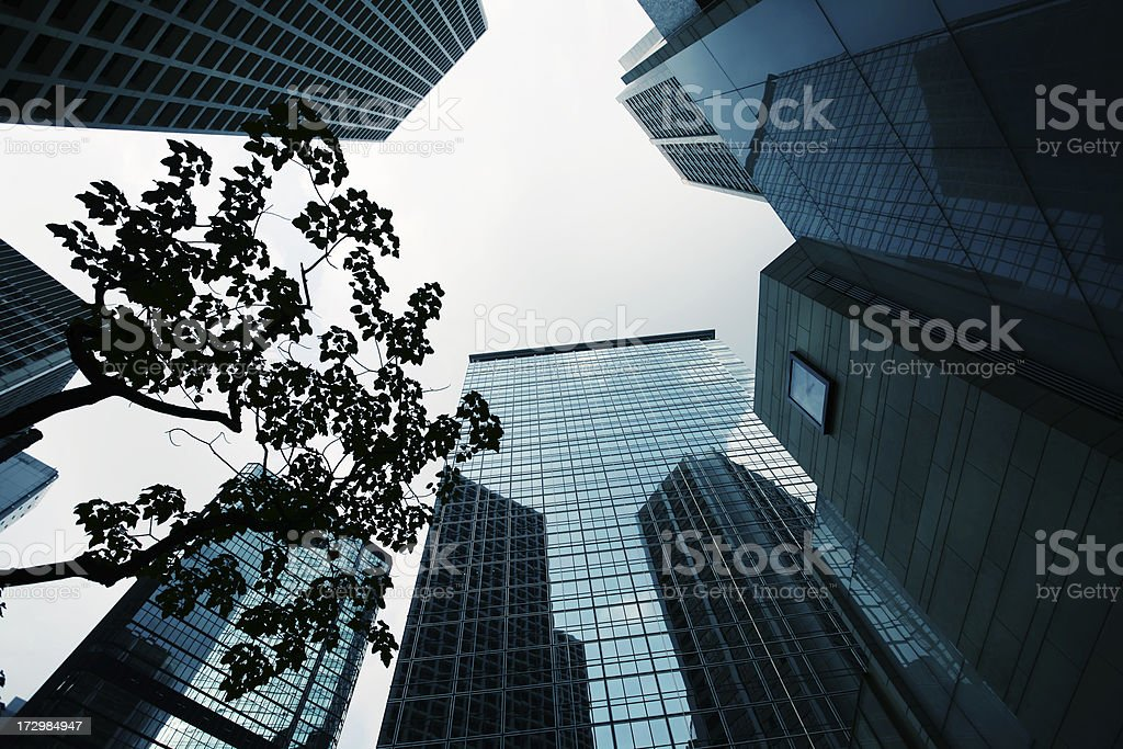 Crowded Office Buildings royalty-free stock photo