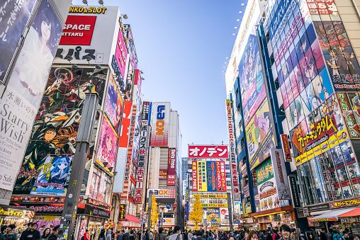 View of Akihabara Electric Town.